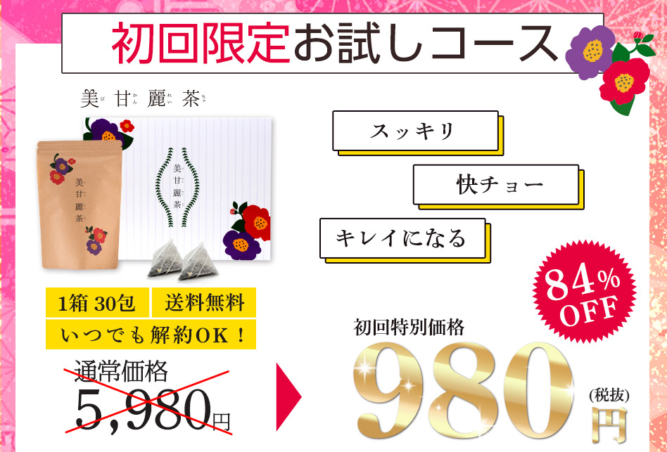 初回980円のお試しコース